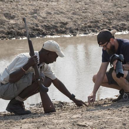 Local Safari Guide, Zimbabwe